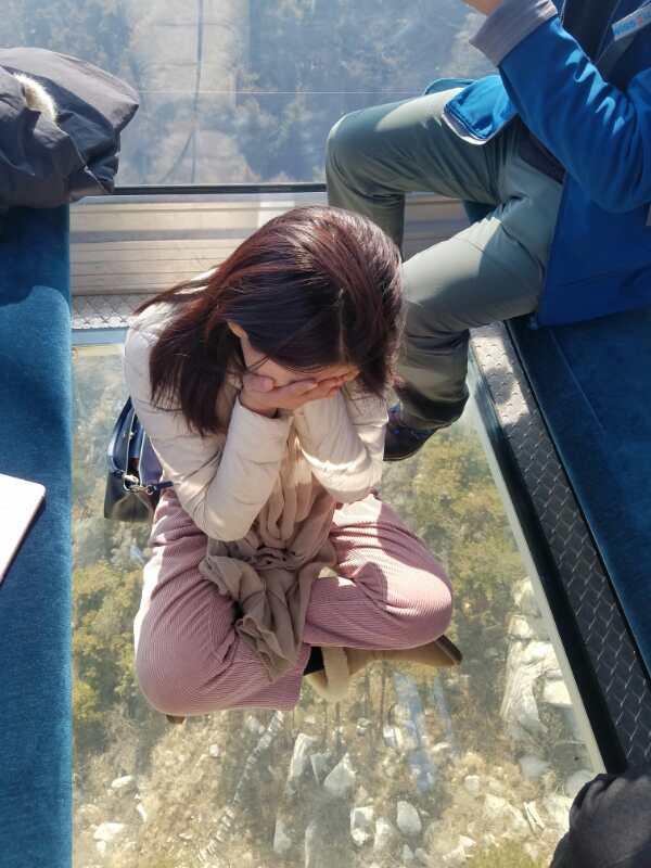 【小驴剁手节】9大全到沂蒙山v大全,沂蒙山动物月份模拟器景区攻略下载图片