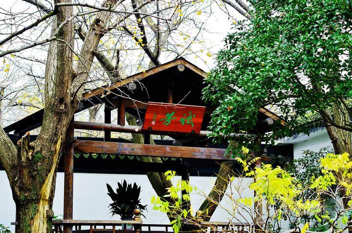 【我是达人】太湖东山--秋色缠绵,岁月静好