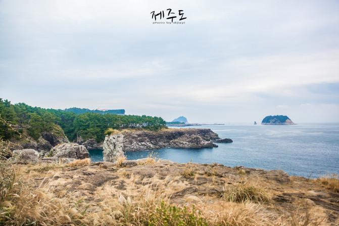 【我是达人】【济州岛】白日梦不醒,少女心不