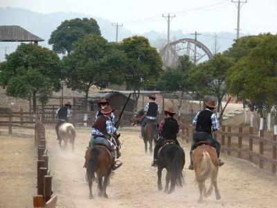"""""""  牛仔动物园:除了骏马以外,我们的度假村还有骆驼,鸵鸟,藏獒,山羊"""