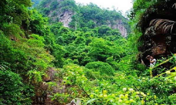 桂平龙潭森林公园