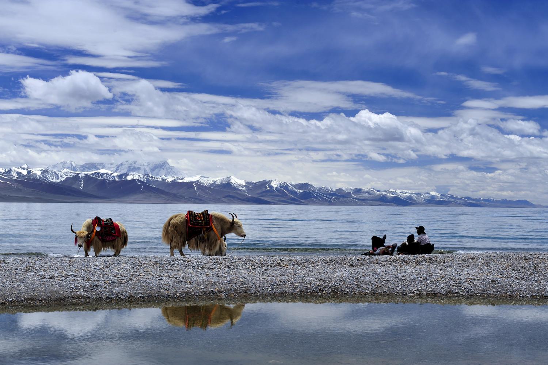 拉萨到纳木错一日游_成都出发西藏拉萨林芝国道318公路川藏线、青藏线13日环线游_到 ...
