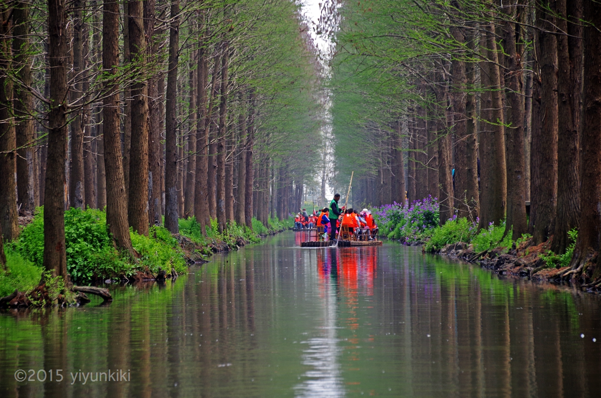 兴化森林公园内容|兴化森林公园版面设计图片