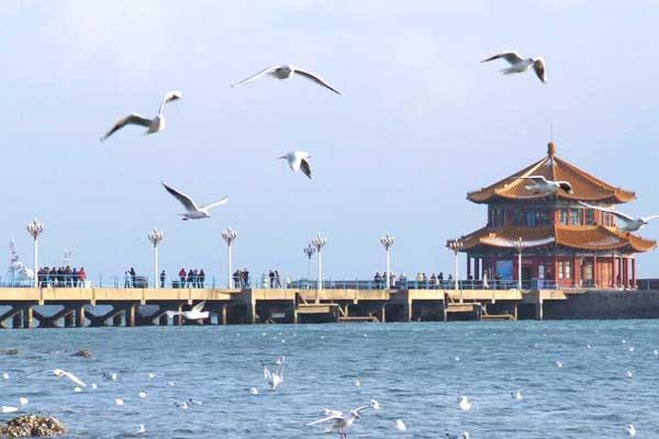 青岛著名风景——栈桥