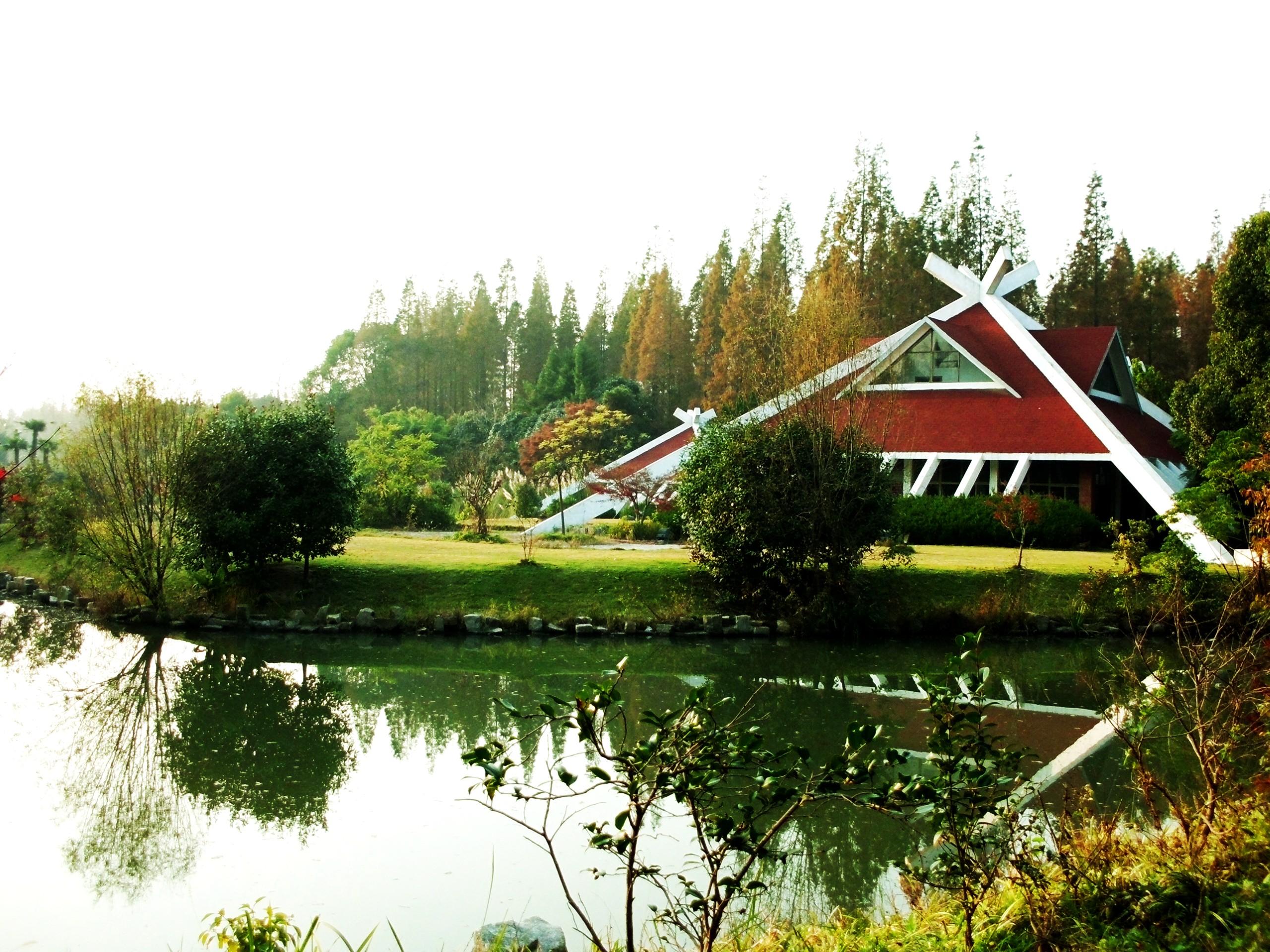上海东平国家森林公园图片