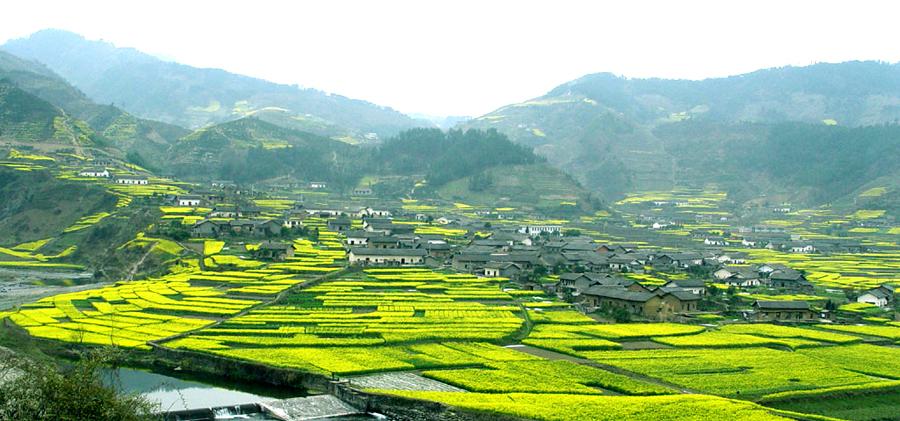 陕西安康美丽乡村平利龙头村、茶山、楚长城遗址巴士1日游