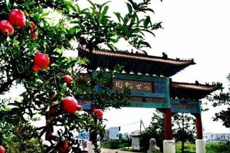 龟山省级地质公园 枣庄博物馆巴士2日跟团游 石榴采摘