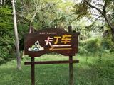 【世界那么大,我先去崇明】住1晚顺利大酒店+【景区4选1】东滩湿地公园(候鸟天堂)/东平国家森林公园(天然氧吧)/江南三民文化村(特色民俗)/明珠湖公园
