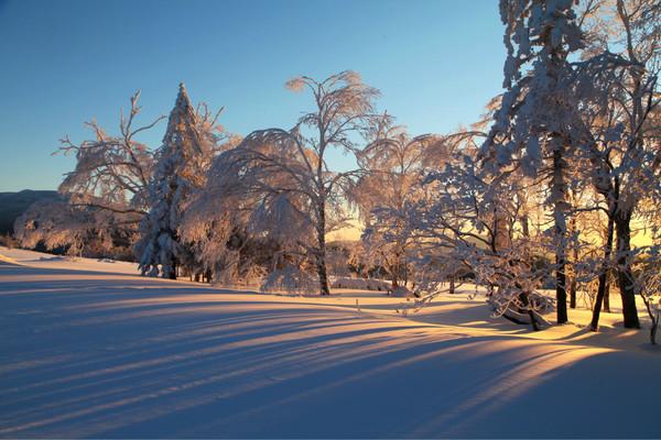 哈尔滨中国雪谷穿越中国雪乡游记攻略