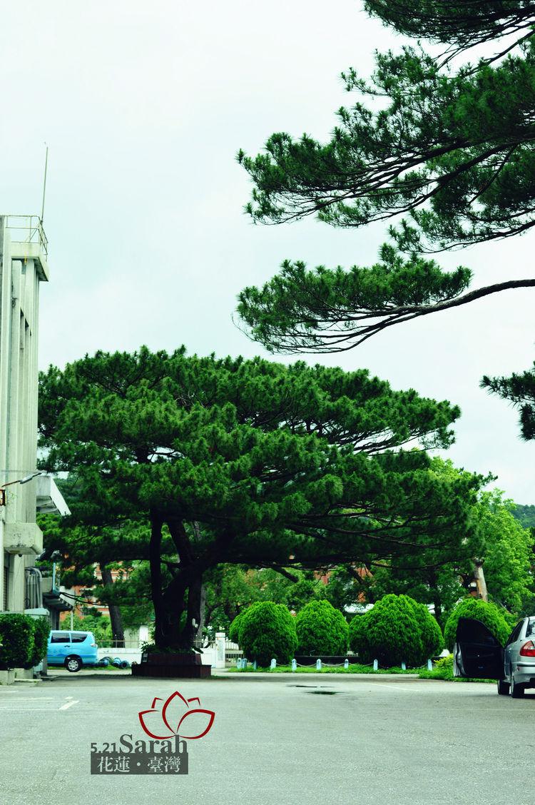 日�yd+9b�_「吉安庆修院」 花莲的吉安乡在日据时代是大批日本人移民的主要据点