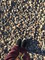 【抚仙湖2天1晚自由行】住1晚云之梦酒店+酒店早餐+专属沙滩+饱览湖光山色+酒店免费WIFI