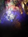 广西德天大瀑布通灵大峡谷巴士2日跟团游(大美观德天 山水秀通灵 《花千骨》取景之地。)