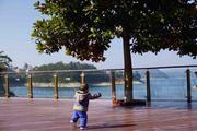 【临湖酒店】住1晚千岛湖梅地亚君澜度假酒店/千岛湖希尔顿(酒店2选1),可自选上海到千岛湖旅游大巴车