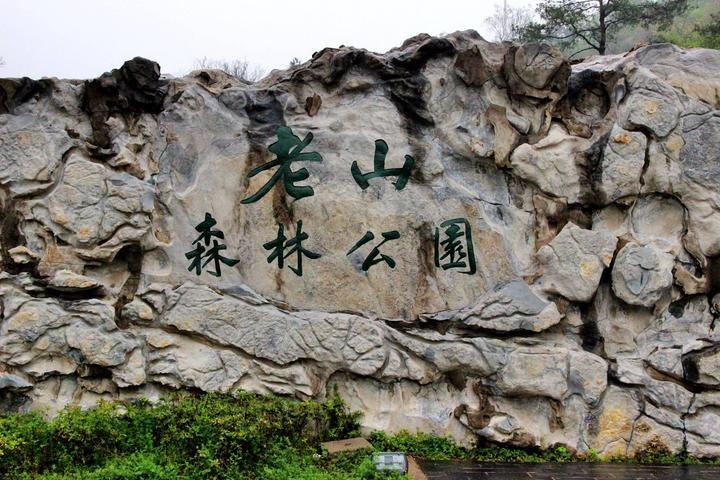 狂恋地——老山国家森林公园图片