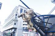 毛里求斯7晚10日自由行(【艾美Le Meridien】,毛航MK直飞★★★★)