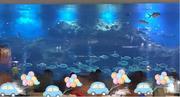 【亚龙湾畅游,门票四选一】三亚亚龙湾迎宾馆3天2晚自由行+自助海底餐厅早餐+七色幻彩泳池+儿童电子水族馆