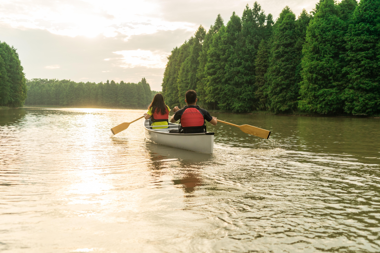 【划进水上森林,探索自然】上海海湾森林公园1日水上运动之旅,平台舟图片