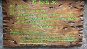 清远新银盏温泉1日游([清远温泉养生季]清远盏温泉直通车一日游:包含 往返交通、一自助正餐(价值68元)、泡温泉一次、鱼疗、跟车工作人员)