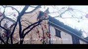 三清山、圣境熹园、篁岭梦幻梯田3日巴士游(观非物质文化遗产、品位婺源特色鲜花小镇篁岭,宿主题酒店,纯玩无购物)