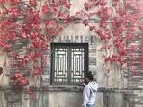 密云2天1晚【红叶小镇 赏秋天的童话】北京古北水镇大酒店1晚+双人早餐+温泉票,入住酒店即可享受在景区买古北水镇门票80元/人,出游期间无限次出入景区