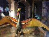 常州3天2晚【体验两种爆款亲子酒店】第1晚住常州恐龙人俱乐部酒店(含早),第2晚住景尚·恐龙主题度假酒店(含早)+恐龙园