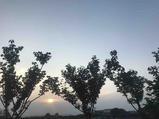 无锡2天1晚【太湖周边】无锡最佳美洲锦亭国际酒店含双早+灵山小镇·拈花湾/鼋头渚等景点多选1+酒店停车、wifi